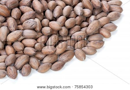 Stack Of Unshelled Pecan Nuts With Copy Space