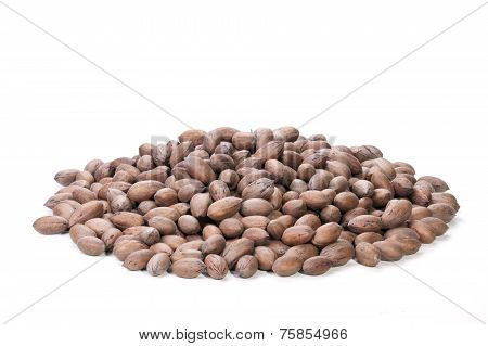 Pile Of Unshelled Rich Brown Pecan Nuts