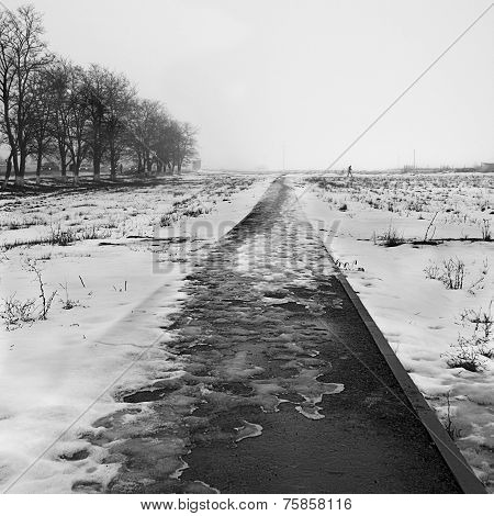 Winter Landscape In Black And White