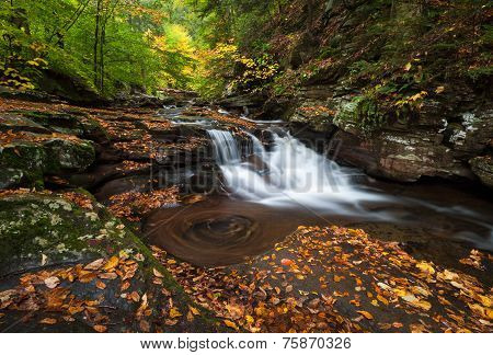 Autumn Waterfall Pennsylvania Ricketts Glen State Park