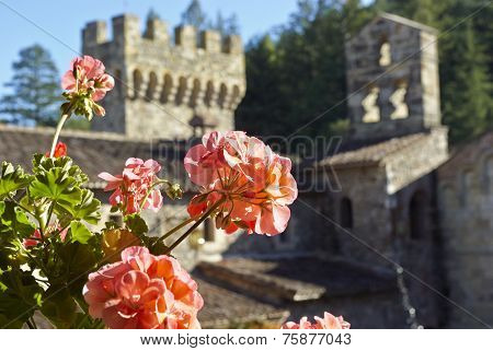 Flowers in a castle