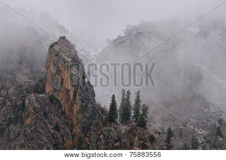 the snow Mountain on Fairly Meadow. Northern Pakistan.