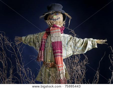 Scarecrow on dark blue background