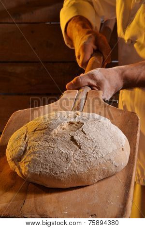 Cook taking out the bread from the oven.Baker holding a fresh bread just taken out of the oven.