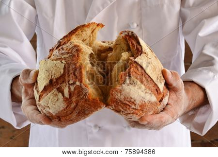 Chef holding fresh bread. Baker holding a fresh bread just taken out of the oven.