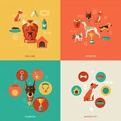 stock photo of puppy dog face  - Dog icons flat set with dog care exhibition champion favorite pet isolated vector illustration - JPG