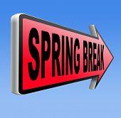 image of spring break  - spring break holiday or school vacation     - JPG