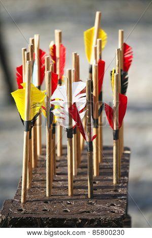 Bow Arrows Closeup