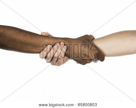 African And Caucasian Female Holding Arms