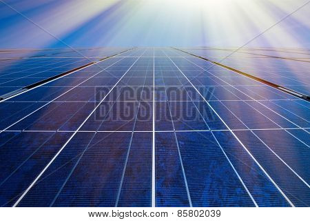 Solar Panels And Sunrays