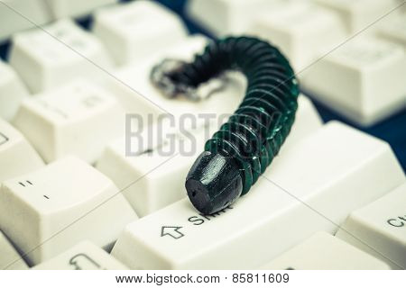 computer worm infection