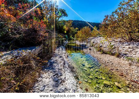 Bright Beautiful Fall Foliage on a Rocky Clear Creek in Lost Maples State Park, Texas