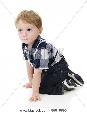 An adorable little boy kneeling while looking up.  On a white background.