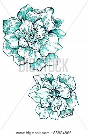 Outline Floral Elements