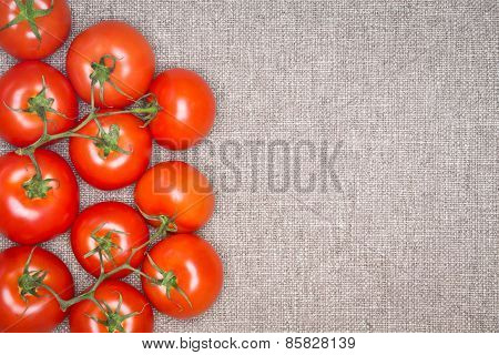 Overhead Of Red Ripe Tomatoes On The Vine