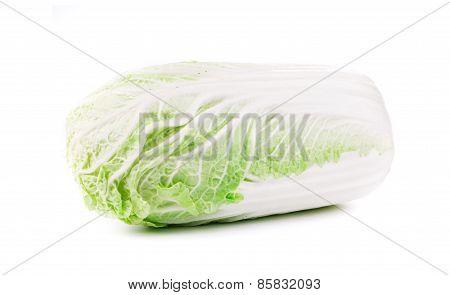 Fresh chinese cabbage.