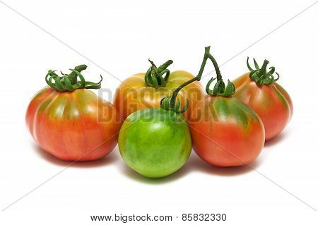 Tomatoes Closeup Isolated On White Background