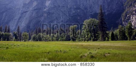 Tuolumne Meadow - Yosemite