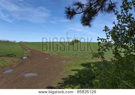 Field with land road and power electric line