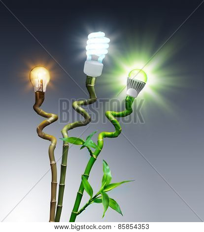 bulbs in comparison - Halogen, Fluorescent and LED - on bamboo