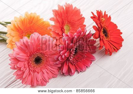 colorful gerbera flowers on wooden table