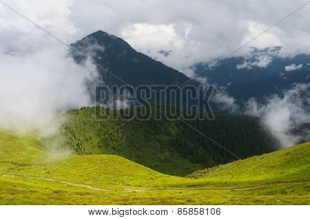 Summer landscape in the mountains. Clouds shroud the summit. Beauty in nature