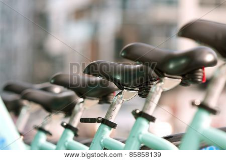 Bicycle Seats Are Uniformly Lined Up In A Row