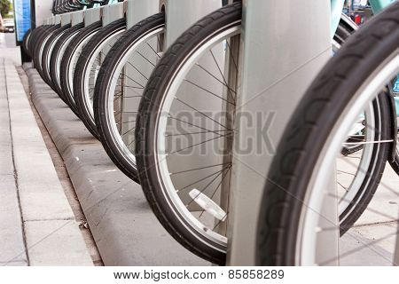 Bicycle Tires Are Lined Up In A Uniform Row