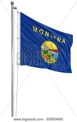 3D Montana Flag
