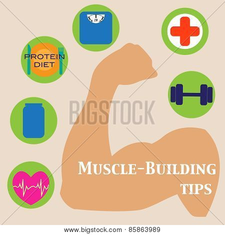 Muscle-building Set