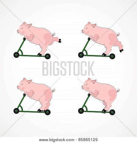 illustration of a pig