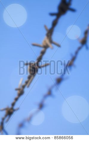 Barbed Wire Blurred