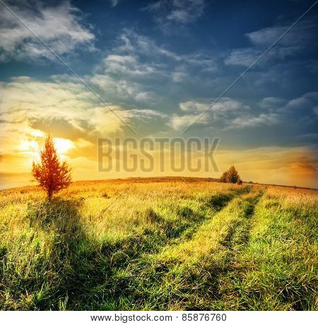 Road in field on a background of dramatic sky