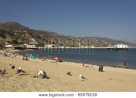 People Relaxing On Malibu Beach