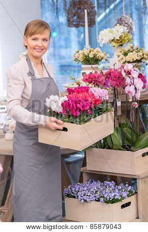 Florist by the flower pots