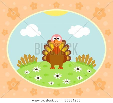 Farm background with turkey