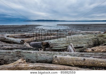 Serene Puget Sound At Low Tide - Normandy Park, Washington