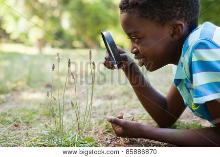 Cute little boy looking through magnifying glass on a sunny day