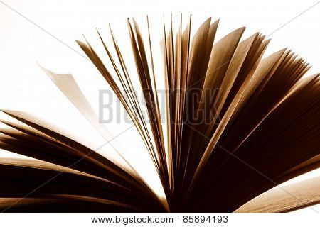 Open old book, pages fluttering. Fantasy, imagination, education concept. Vintage mood.
