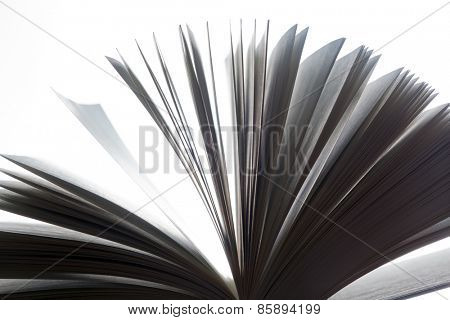 Open book, pages fluttering. Fantasy, imagination, education concept. Black and white.