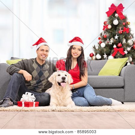 Young couple celebrating Christmas with their dog at home shot with tilt and shift lens