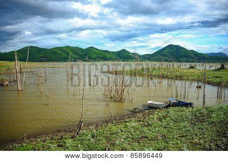 Rural Swamp
