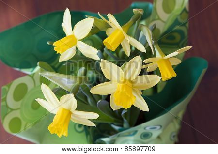 Daffodils For An Easter Celebration
