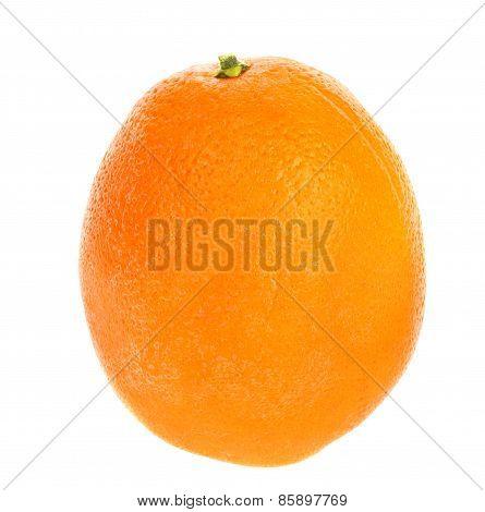 Citrus Orange Fruit