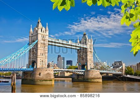 Tower bridge with green leaves, London
