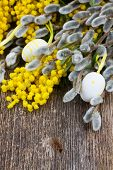 stock photo of mimosa  - French yellow mimosa and catkins with easter eggs on wooden table - JPG