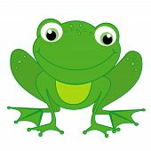 foto of cute frog  - Illustration of a cute little happy frog isolated on white background - JPG