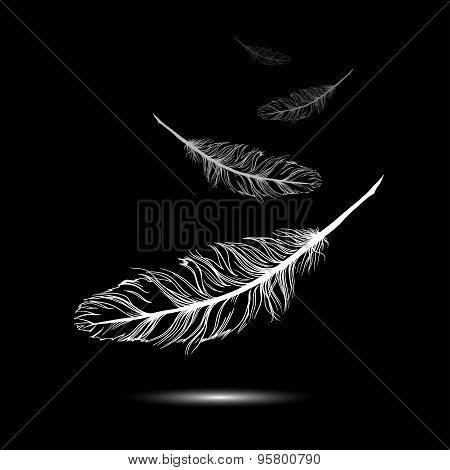 flying feathers with black background. EPS 10. Vector