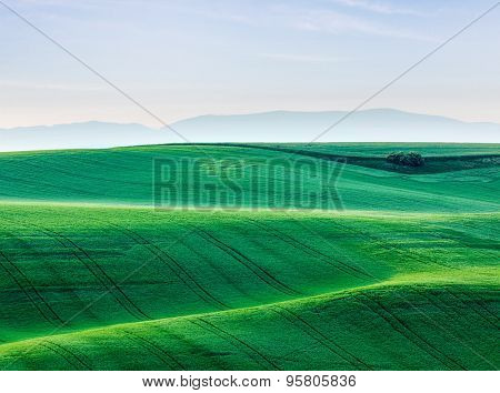 Moravian rolling landscape. South Moravia, Czech Republic