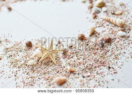 Sea shells and pink sand with a starfish on a white background